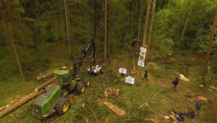 Minister Szyszko nie respektuje przepisów dot. obszarów chronionych Natura 2000. Chce wprowadzić zmiany, które zaszkodzą polskiej przyrodzie!
